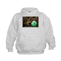 Agouti With Shamrock Hoodie