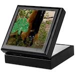Red Ruffed Lemur with Shamrock Keepsake Box
