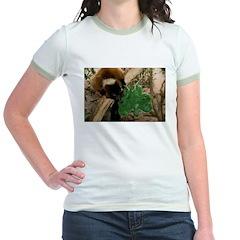 Red Ruffed Lemur Eating Shamrock T