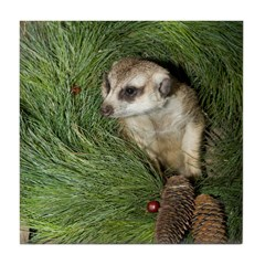 Meerkat In Wreath Tile Coaster
