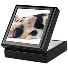 Micro pig chilling out Keepsake Box