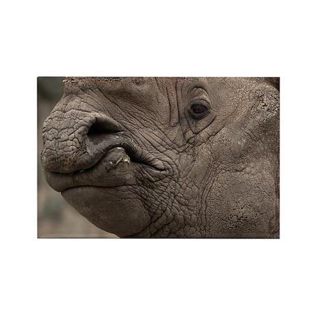 Rhino 8856 Rectangle Magnet (10 pack)