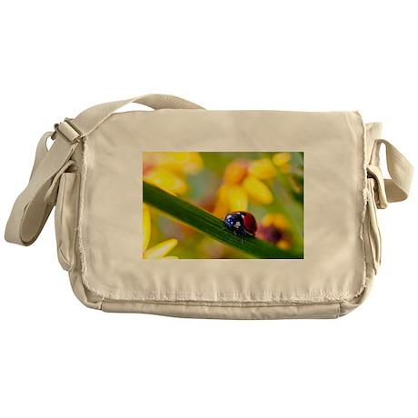 Ladybird on Ragwort flowers Messenger Bag