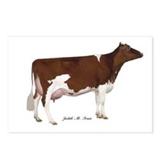 Red and White Holstein Cow Postcards (Package of 8
