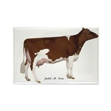 Red and White Holstein Cow Rectangle Magnet (100 p