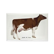 Red and White Holstein Cow Rectangle Magnet (10 pa