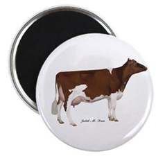 """Red and White Holstein Cow 2.25"""" Magnet (10 p"""