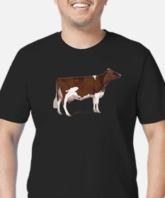 Red and White Holstein Cow T