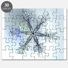 snowflake_imagelarg.png Puzzle