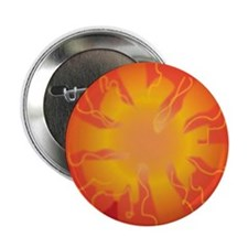 Tomato Slice Button