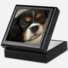 Cute King charles spaniel tri Keepsake Box