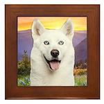 White Husky Meadow Framed Tile