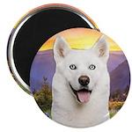 White Husky Meadow Magnet