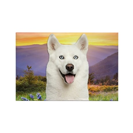 White Husky Meadow Rectangle Magnet