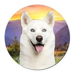 White Husky Meadow Round Car Magnet