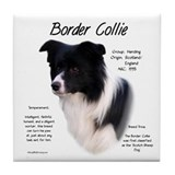 Border collie Kitchen & Entertaining