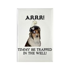 Pirate Collie Rectangle Magnet (10 pack)