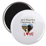 Christmas Love Magnet
