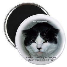 Grumpy Cats Magnet