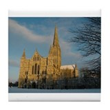 Salisbury cathedral Drink Coasters