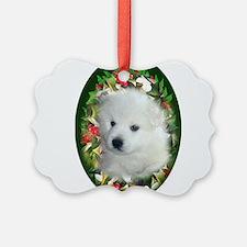 Cute American eskimo agility Ornament