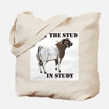 I put the STUD in Study Tote Bag