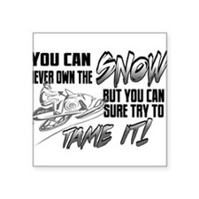"Tame the Snow Square Sticker 3"" x 3"""
