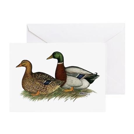 Rouen Ducks Greeting Card