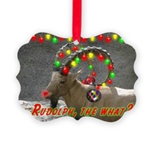 Helaine's Rudolph the What? Ornament