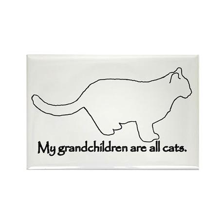 Grandchildren are all Cats Rectangle Magnet (100 p