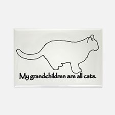Grandchildren are all Cats Rectangle Magnet