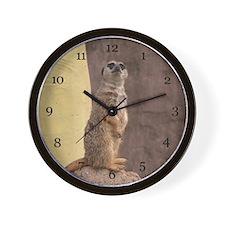 Meerkat  Wall Clock