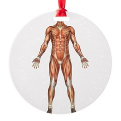 visiblemanfront.png Ornament