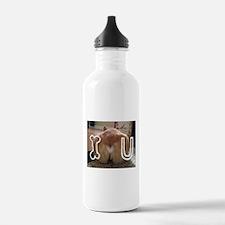 Corgi Love Water Bottle