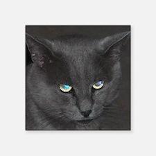 "Unique Cat w/ Cool Eyes Square Sticker 3"" x 3"""