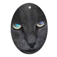 Unique Cat w/ Cool Eyes Ornament (Oval)
