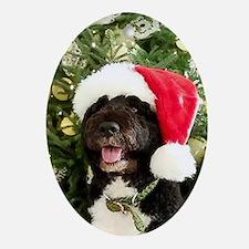 Bo the Dog 2012 Ornament (Oval)