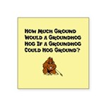 "Celebrate Groundhog Day Square Sticker 3"" x 3"