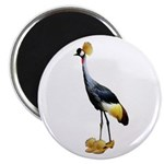 Crowned Crane Wearing Shoes Magnet