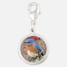 Eastern Bluebird Silver Round Charm