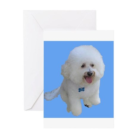 Beau the Bichon Frise Dog on Sky Blue Greeting Car