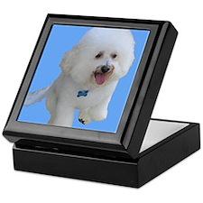 Beau the Bichon Frise Dog on Sky Blue Keepsake Box