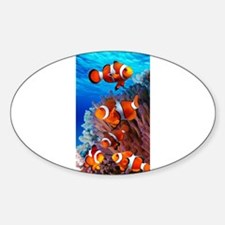 CLOWN NEMO CORAL REEF Decal