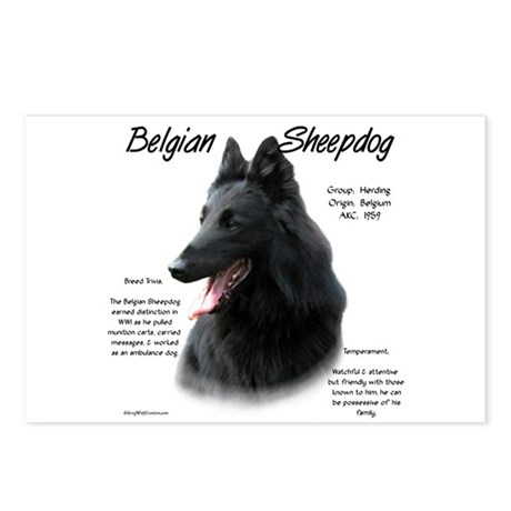 Belgian Sheepdog Postcards (Package of 8)