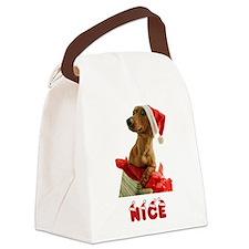 Nice Dachshund Canvas Lunch Bag