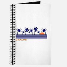 Unique Dive cozumel Journal