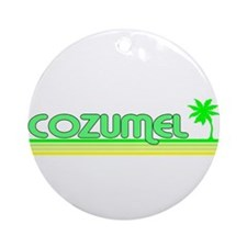 Unique Cozumel Ornament (Round)