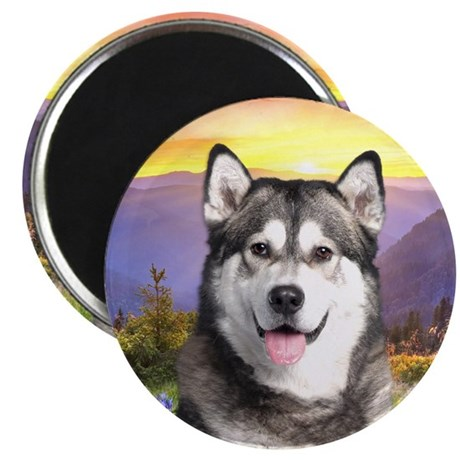 """Malamute Meadow 2.25"""" Magnet (100 pack)"""