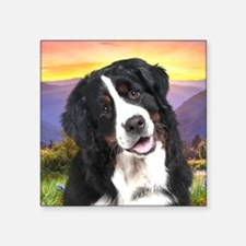 "Berner Meadow Square Sticker 3"" x 3"""