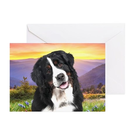 Berner Meadow Greeting Cards (Pk of 10)